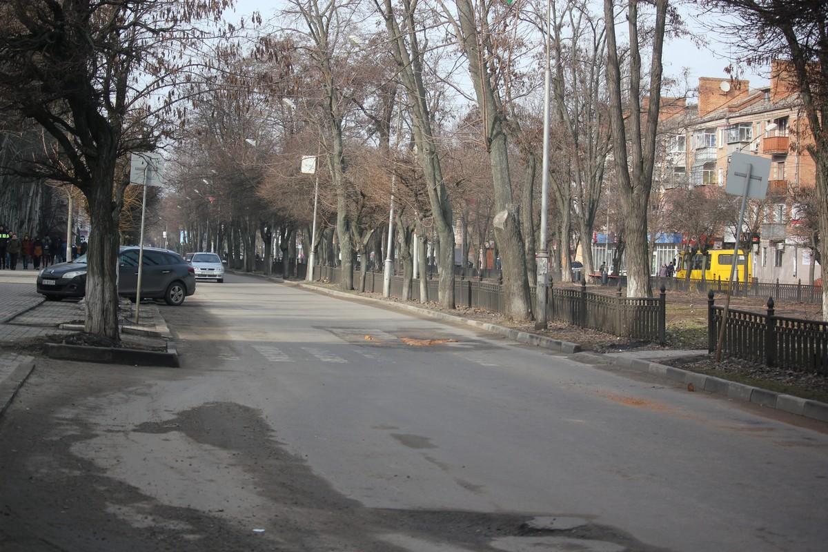 Проспект Трубников