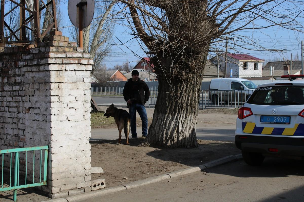 Полицейская собака ищет след