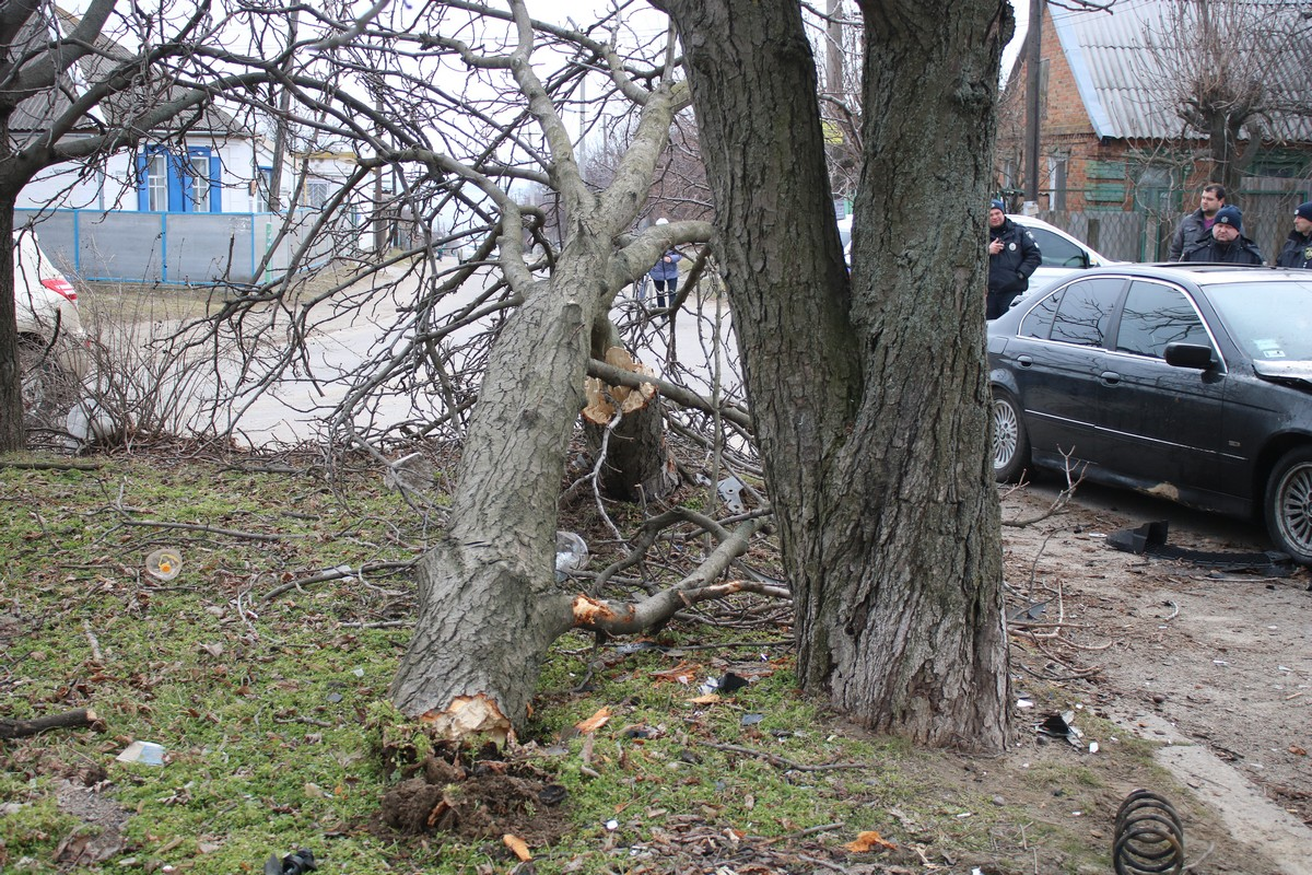 Renault Logan на большой скорости снес дерево и врезался в BMW