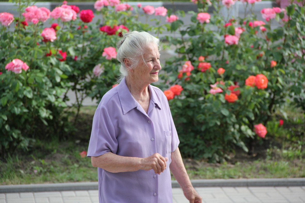Аромат роз дарит хорошее настроение