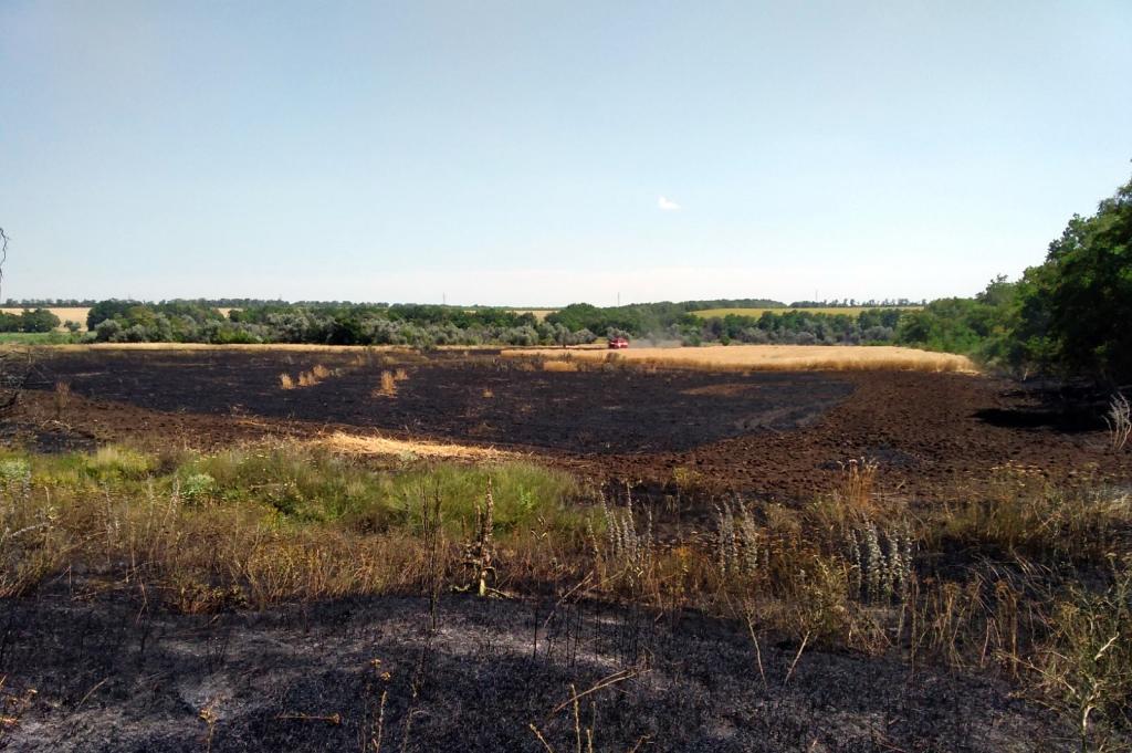 Возле Томаковки горело поле с пшеницей