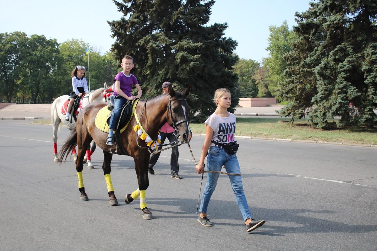 Прогулки верхом на лошадях и пони в центре Никополя