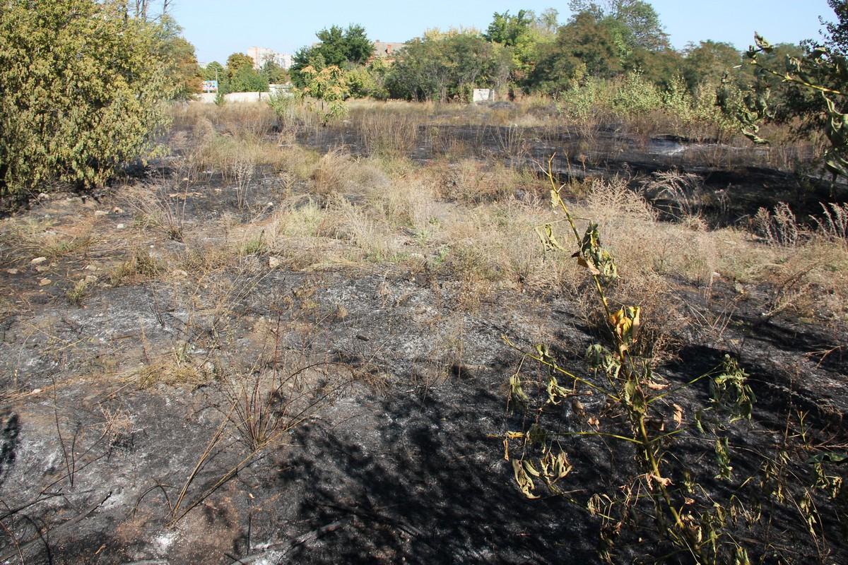 Площадь пожара составила примерно один гектар
