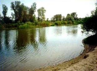 Прокуратура Никополя проверяет факт истощения водоема