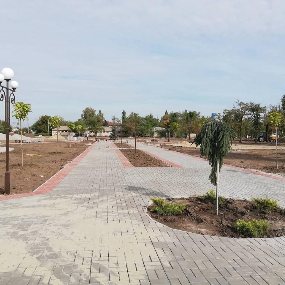В парке высадили хвойники и другие деревья