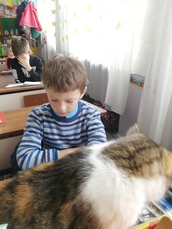 Кошка наблюдает за детьми