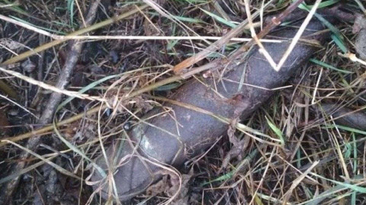 Житель Томаківки знайшов старий снаряд