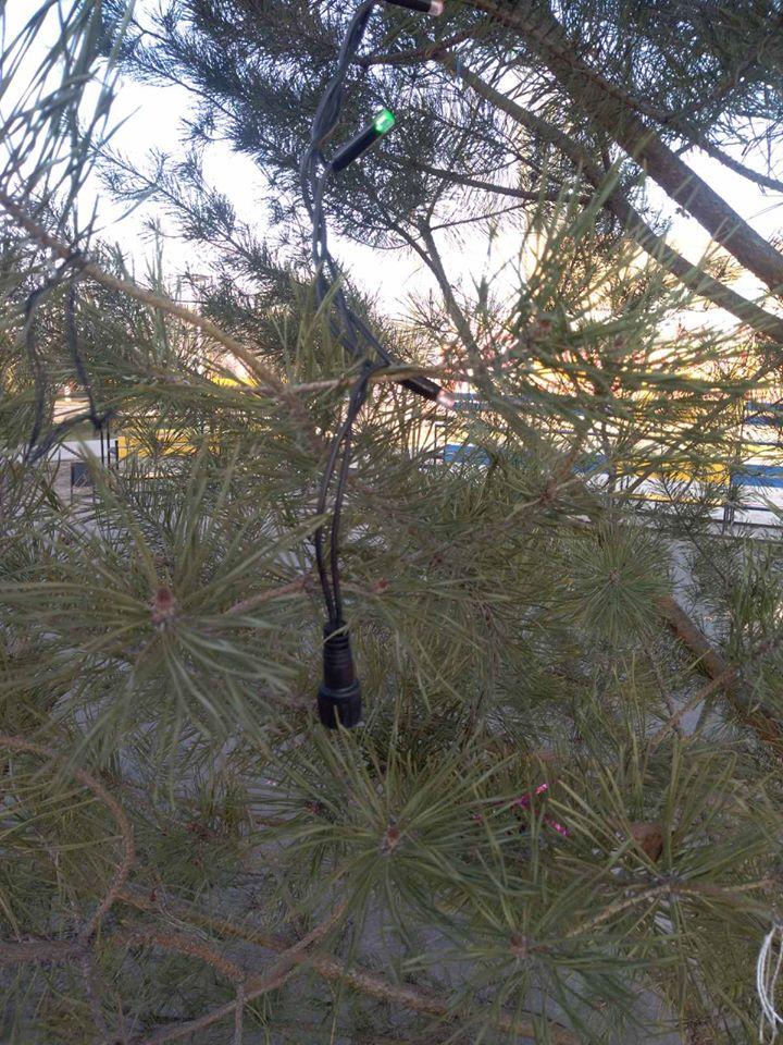 Неизвестные украли игрушки с елки и испортили иллюминацию