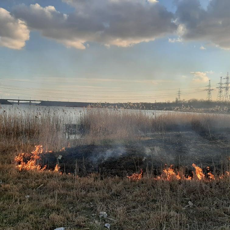 Огонь потушили своими силами