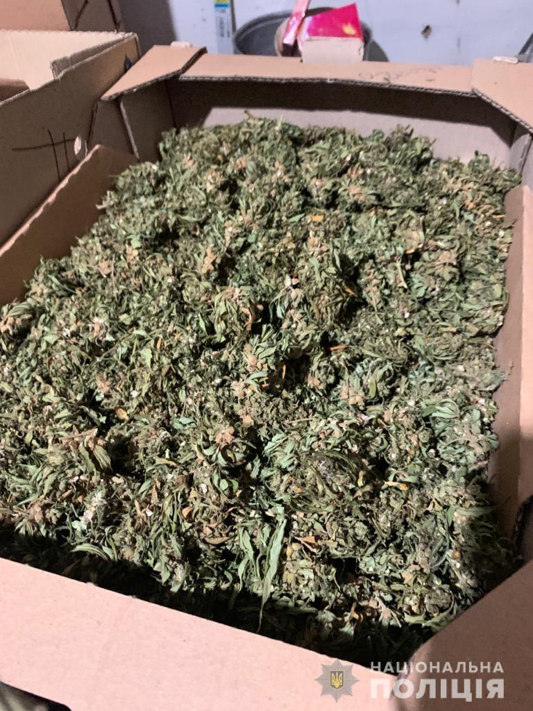 У 43-летнего мужчины обнаружили посев конопли и измельченную марихуану весом более 200 граммов
