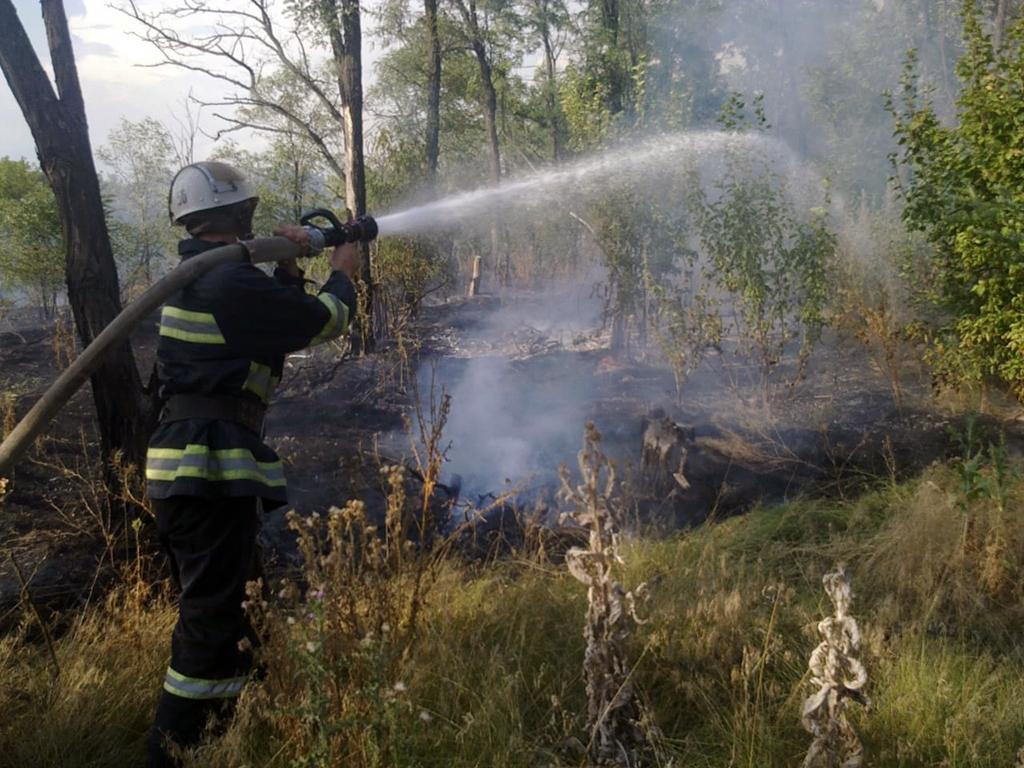 Очень часто спасатели тушат пожар в экосистемах