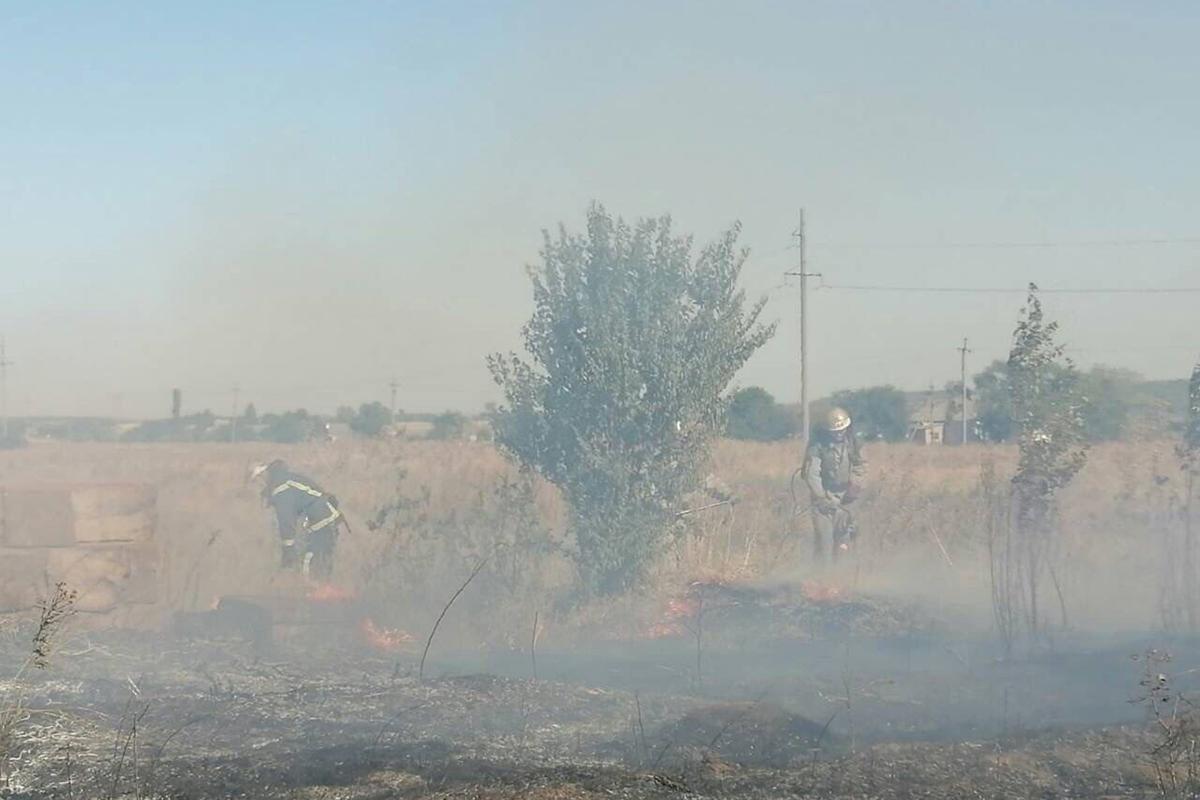 Возле Никополе выгорело 2 гектара травы