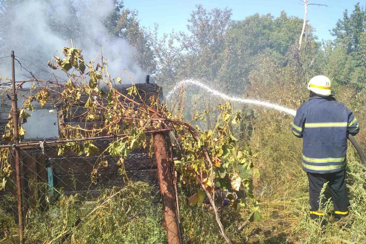 В Марганце во время пожара сгорели 25 цыплят