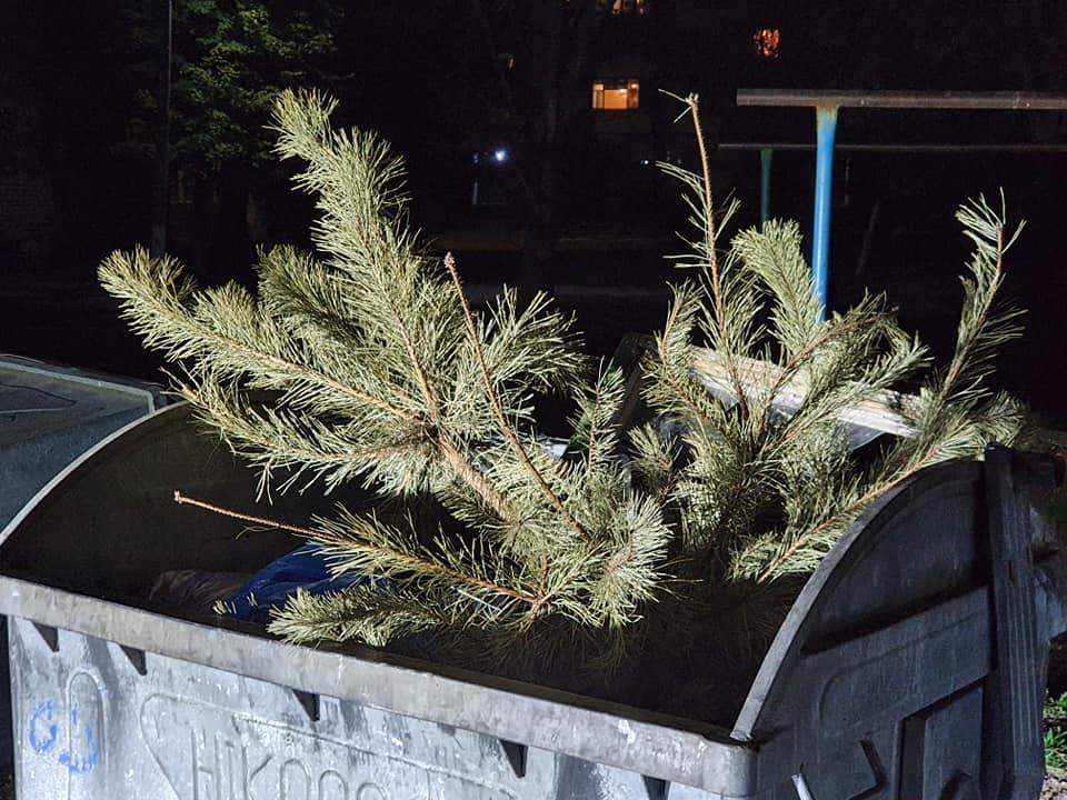 В Никополе выбросили новогоднюю елку в октябре