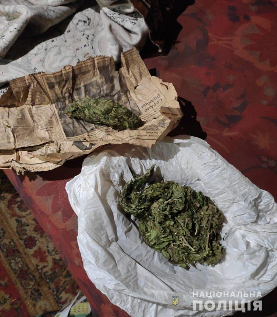 Собака у Покрові знайшла наркотики