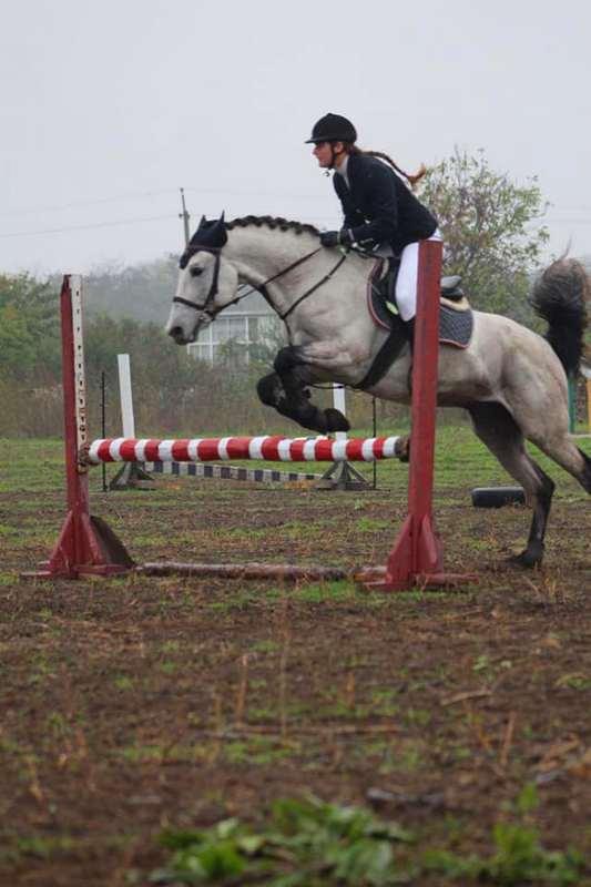 На соревнованиях в Запорожье два призовых места занял воспитанник конного клуба из Никополя, фото-2