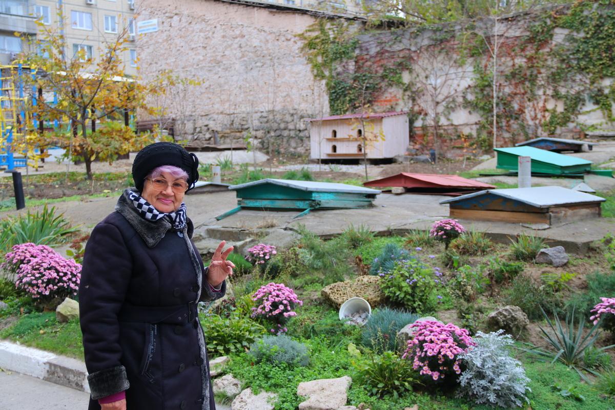 Жительница двора, которая поделилась с нами этой новостью и рассказала подробности