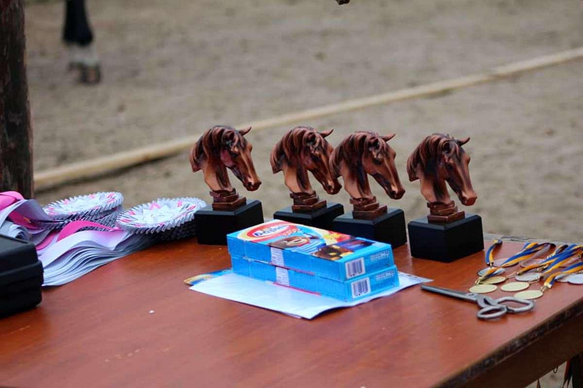 На соревнованиях в Запорожье два призовых места занял воспитанник конного клуба из Никополя, фото-3