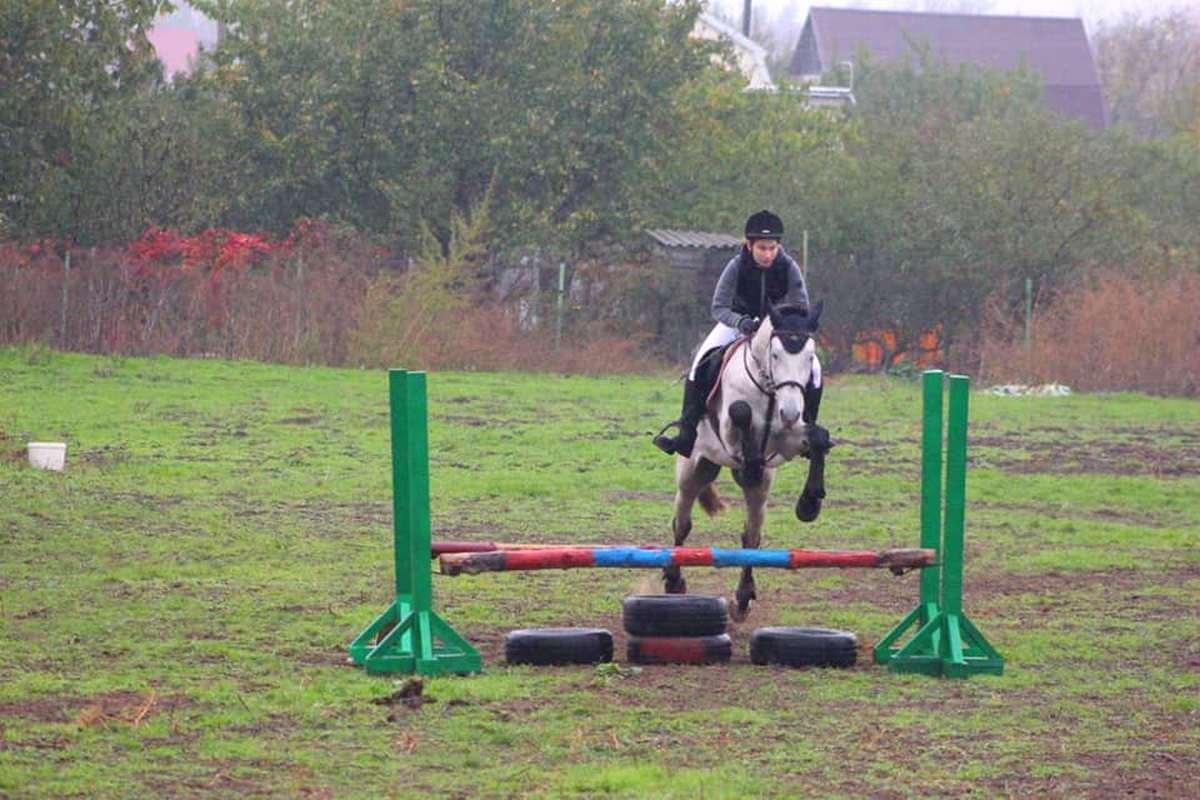 На соревнованиях в Запорожье два призовых места занял воспитанник конного клуба из Никополя, фото-4