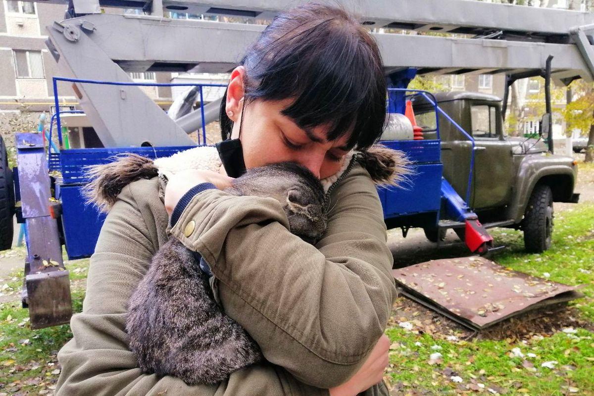В настоящее время животное спасли и тут же забрали в новую семью