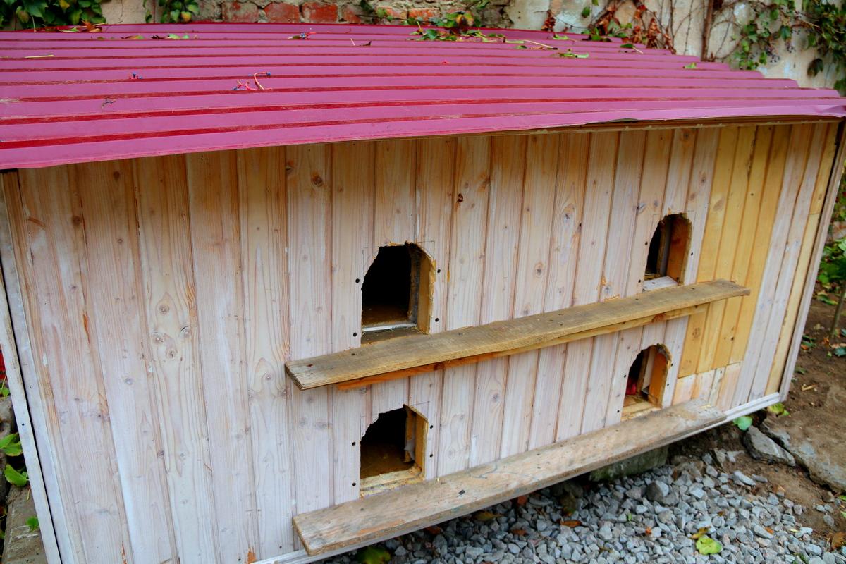 Многоквартирный дом для котов