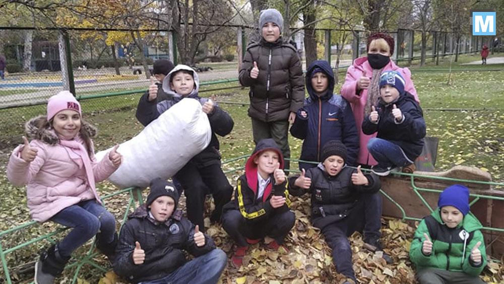 Не пали листя! Утепли безхатніх тварин