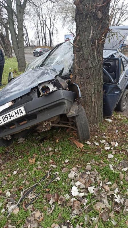 В Никополе автомобиль ВАЗ-2199 врезался в дерево