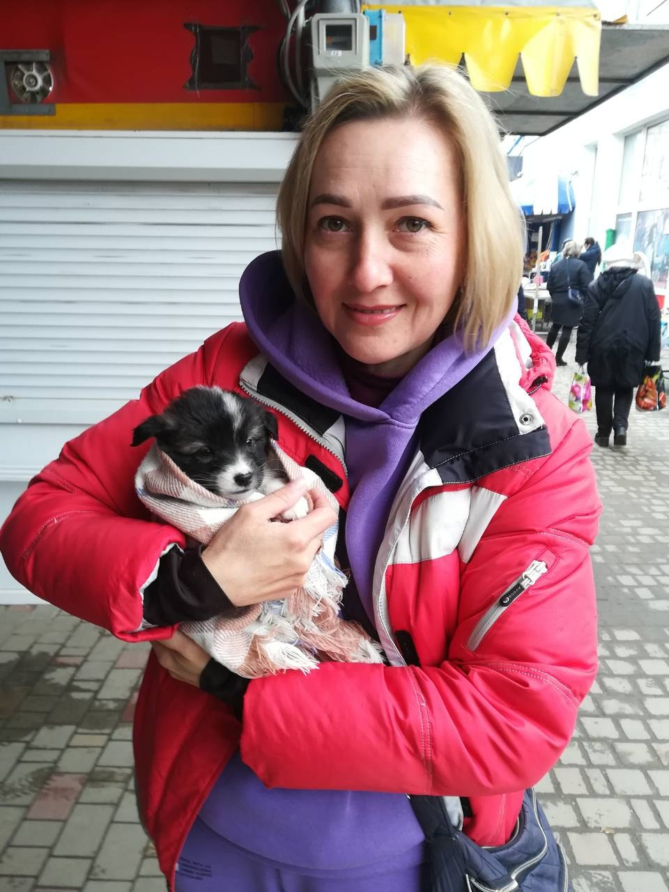 Бездомные животные отправились в новые семьи благодаря волонтерам