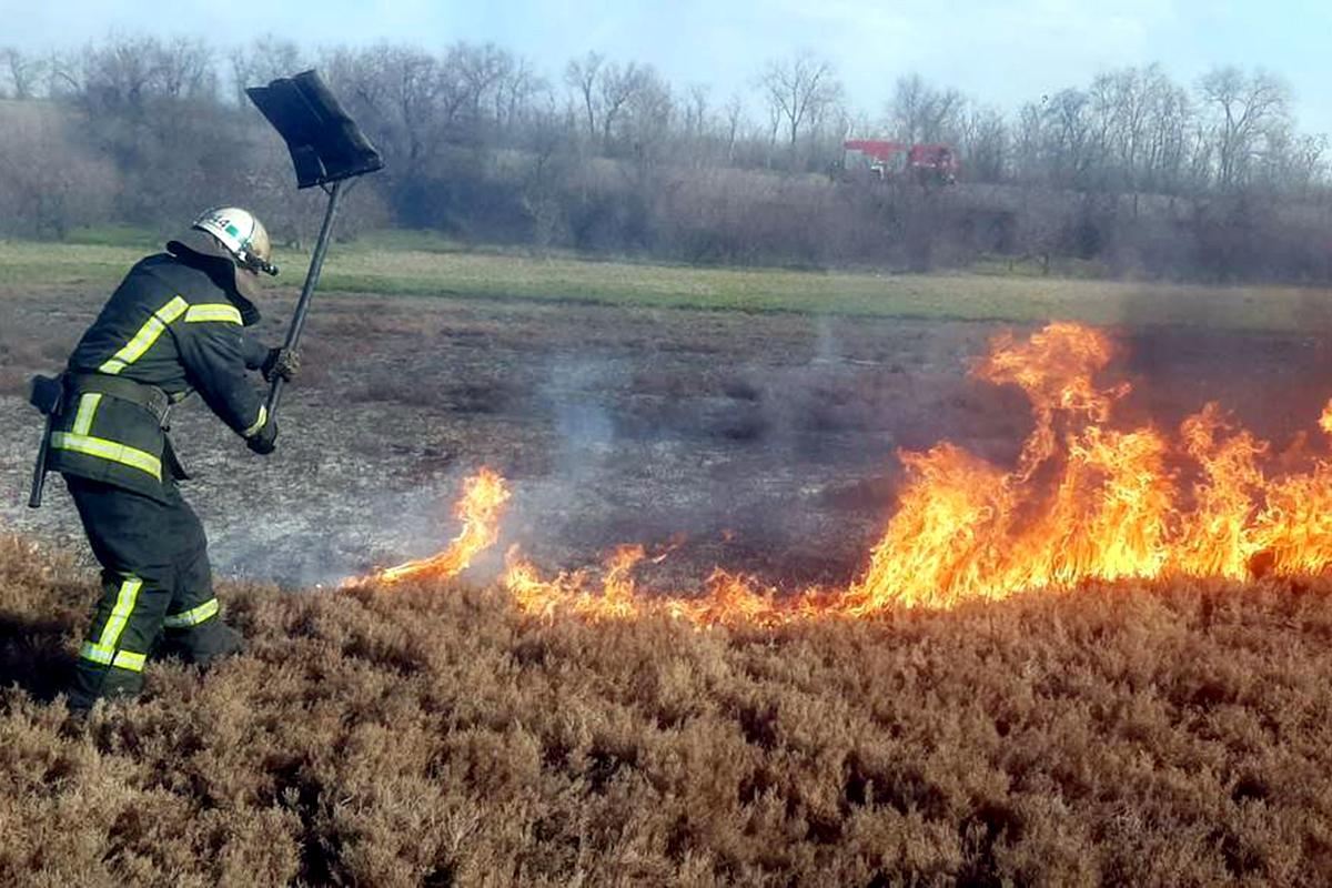 Вблизи села Шолохово горит сухая трава и камыш