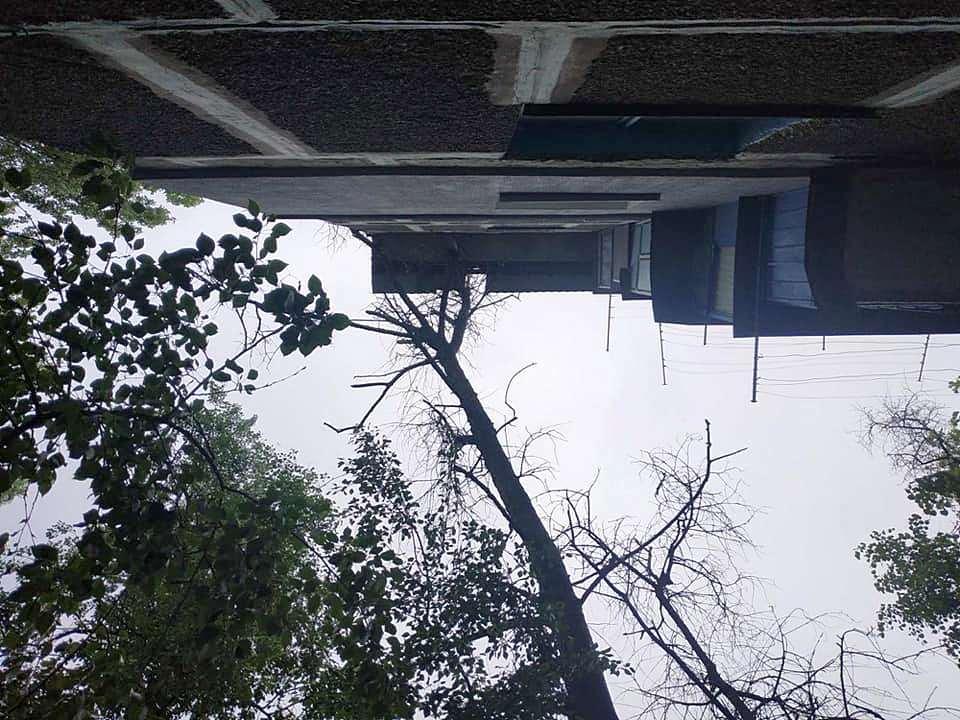 Тополь рухнул на жилой дом