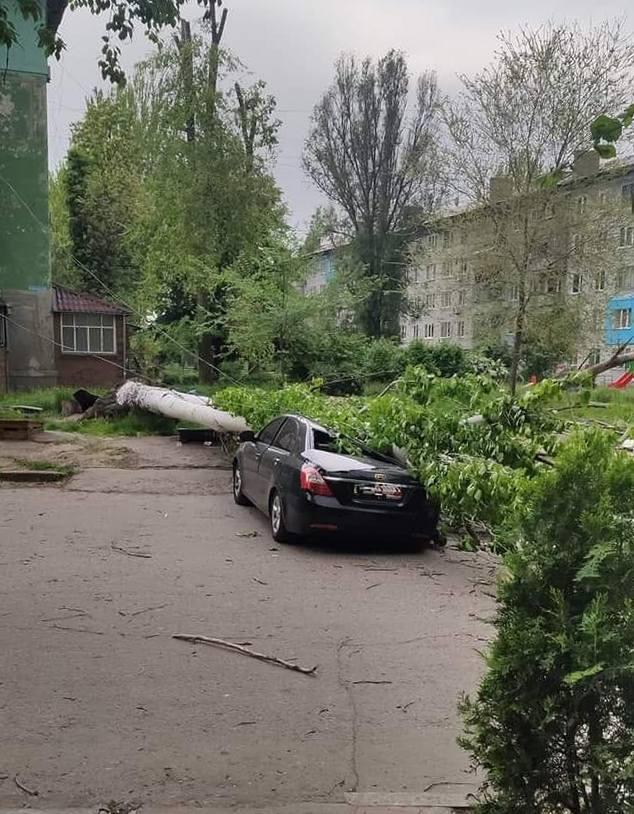 На улице Шевченко тополь упал на авто