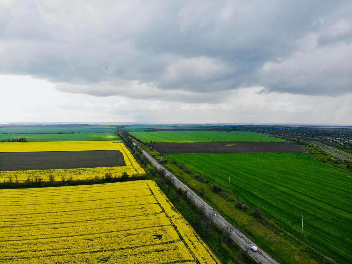 Желто-зеленое настроение