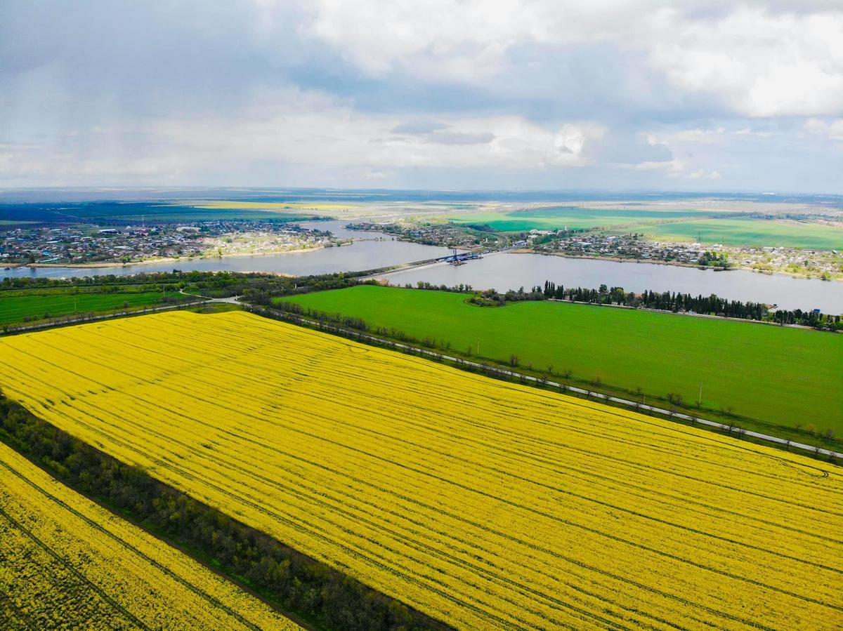 Яркие и красивые поля
