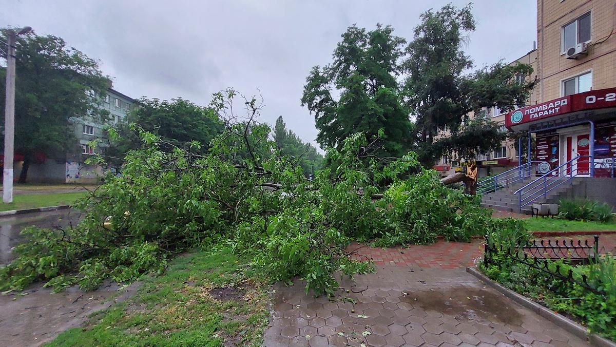 дерево упало на автомобиль Daewoo