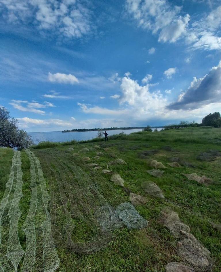 Браконєри розставляють тисячі метрів сіток у Каховському морі