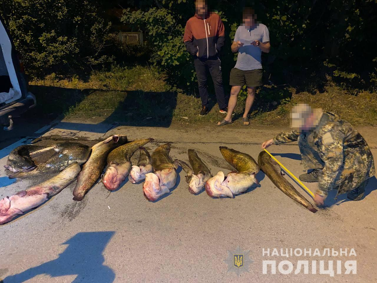 За один выход браконьеры ловили более тонны рыбы