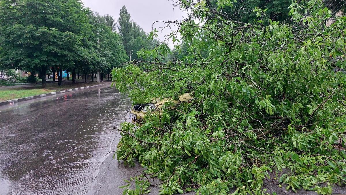 27 июня в Никополе случилось происшествие