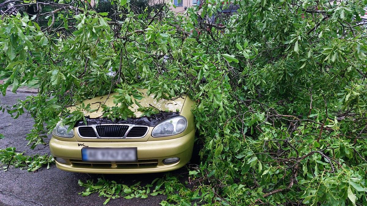 В Никополе начался сильный ветер с дождем
