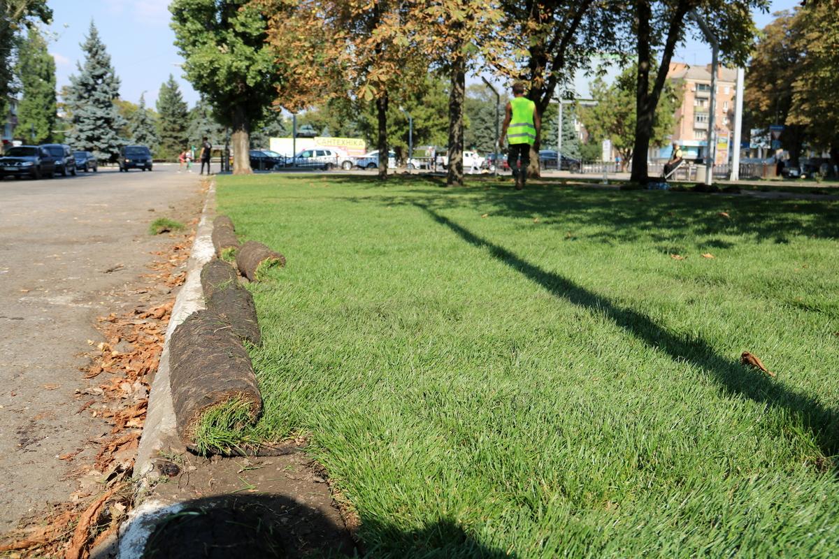 Новенький газон на аллее по улице Каштановой