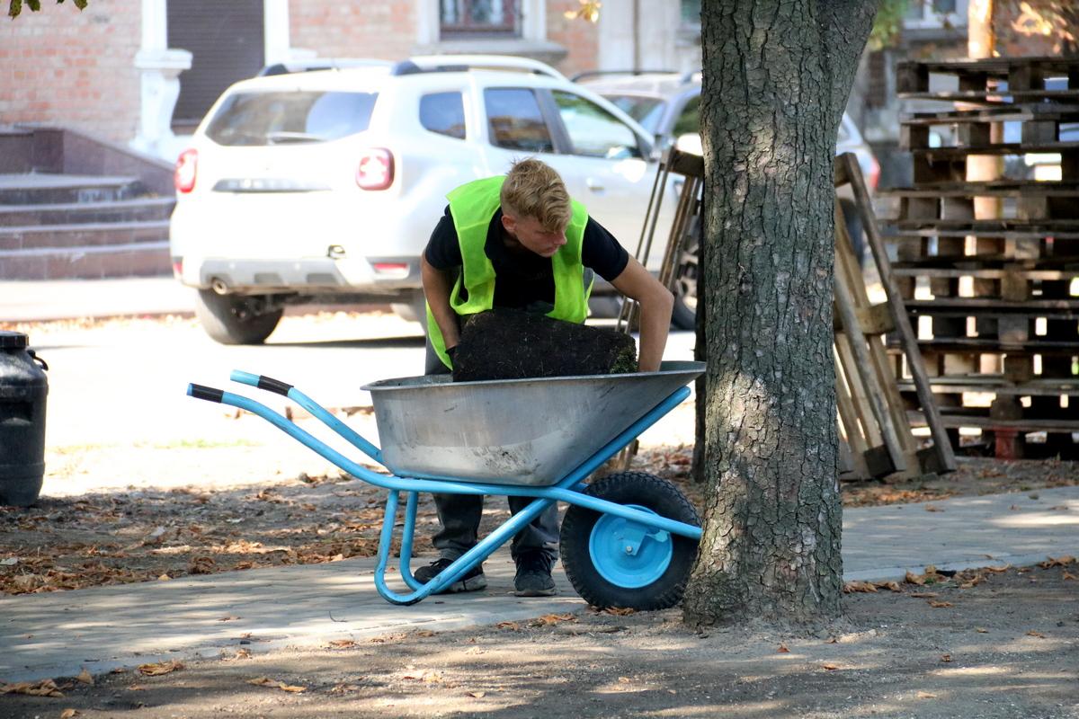 Работники старательно укладывают новый газон